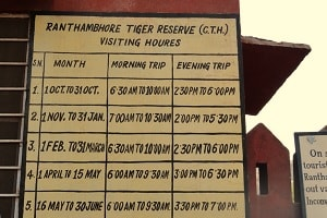 Ranthambore Safari Timings