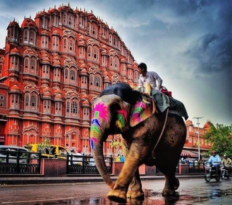 Elephant at Hawa Mahal